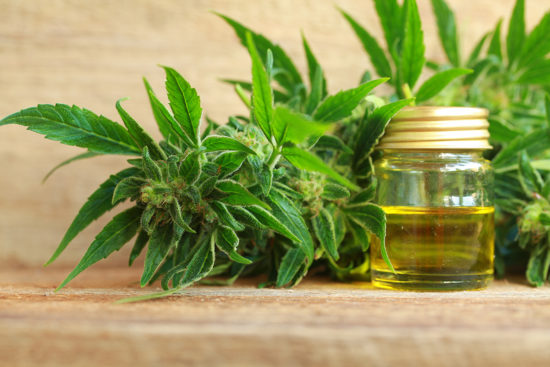 CBD1 AdobeStock 173183695 550x367 - FDA Requests Data on CBD and Other Cannabis-Derived Compounds