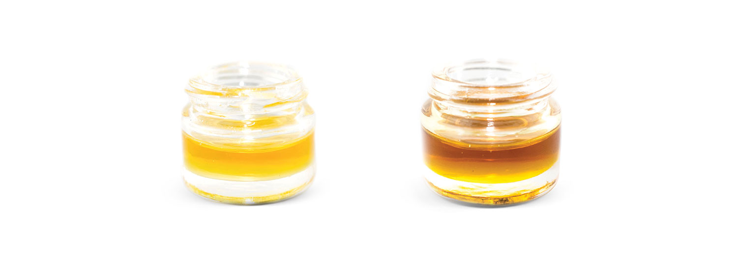 oils 1 - The Difference Between Distillate and Winterized Cannabis Oil CBD